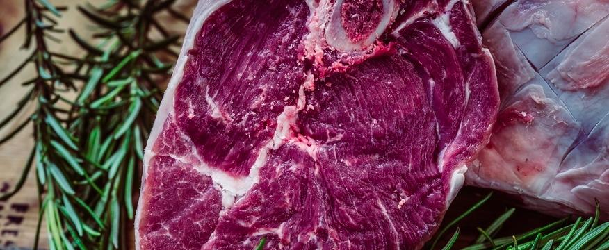 carne e muscoli