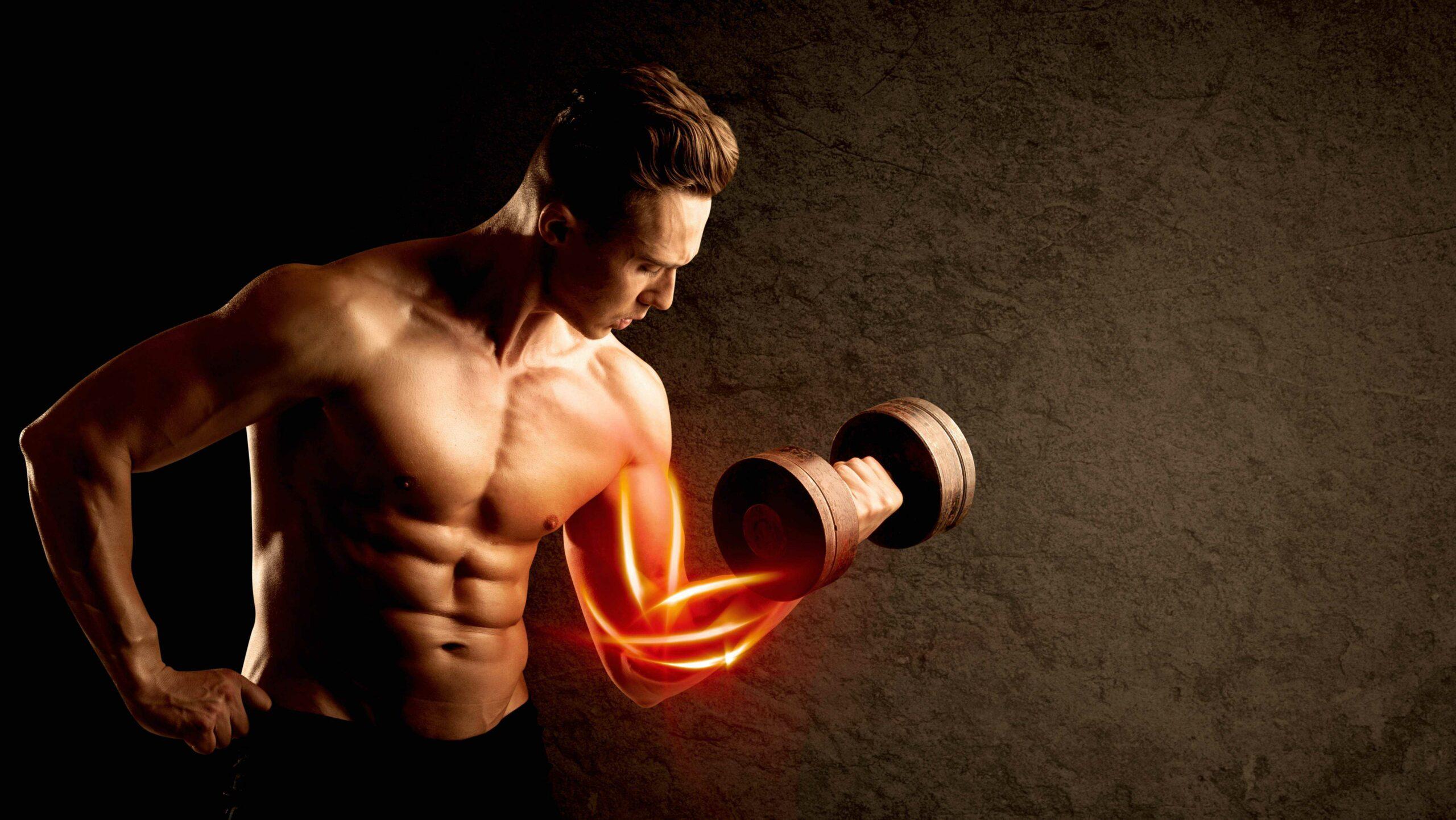 ipertrofia sarcoplasmatica e miofibrillare per il bodybuilding