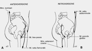 retroversione del bacino