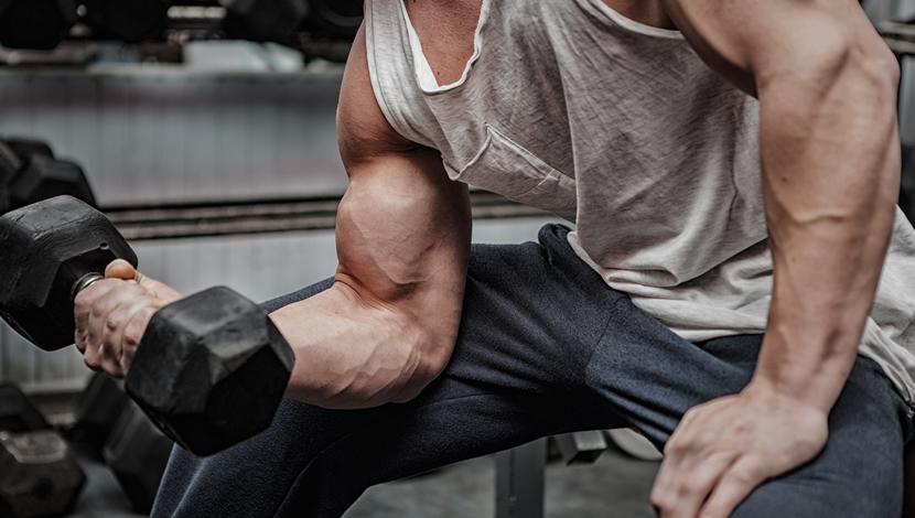 cosa fa crescere i muscoli