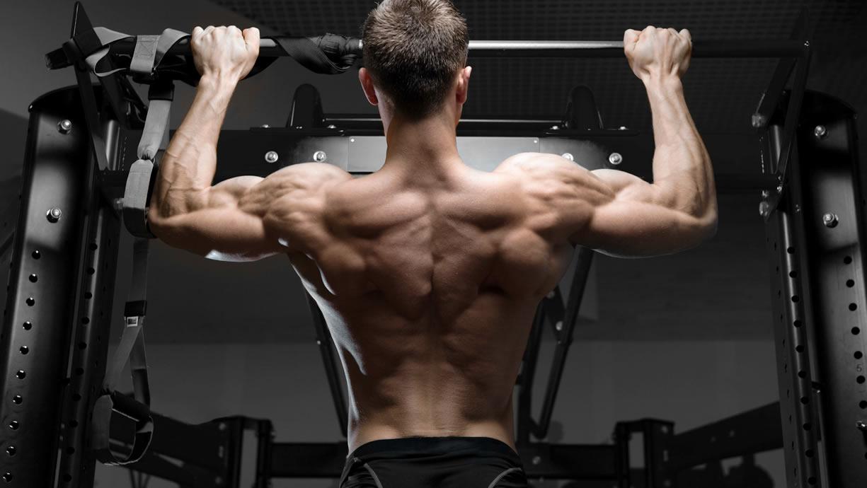 Muscoli coinvolti nelle trazioni