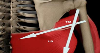 Trazioni-prese-muscoli