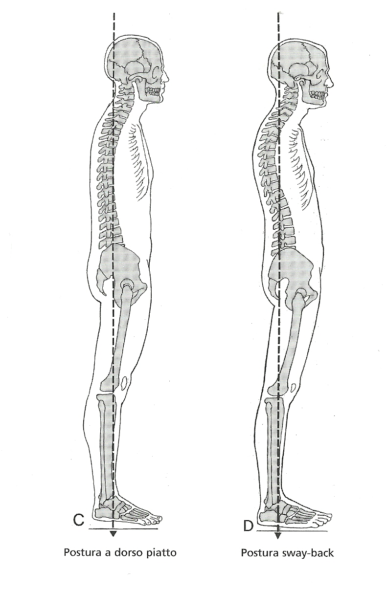 postura e glutei