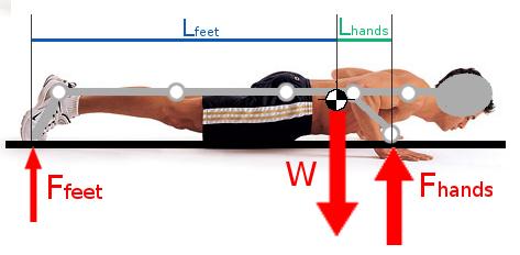 piegamenti sulle braccia biomeccanica