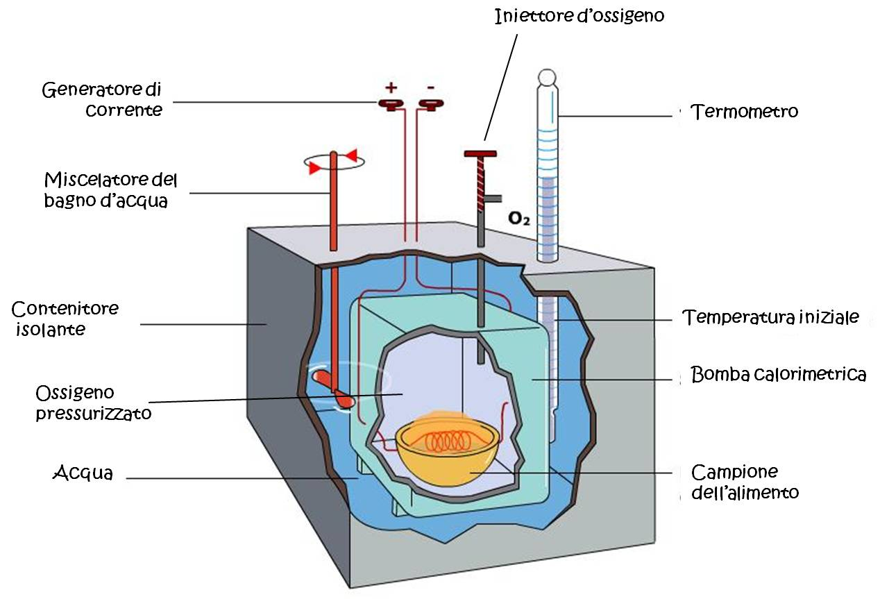 Bomba calorimetrica