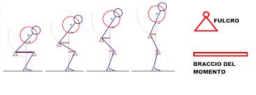 fasi squat