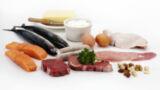 Il Fabbisogno Proteico