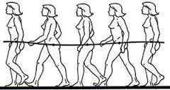 costo energetico camminata