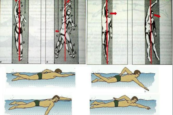 Nuoto mal di schiena