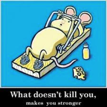 Ciò che non ti uccide ti rafforza