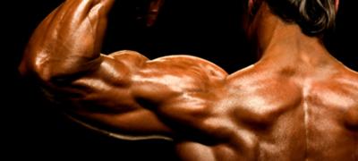 Ipertrofia muscolare: che cos'è e quando si verifica