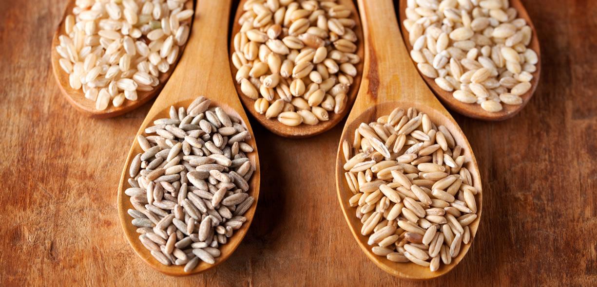 diversi cereali integrali