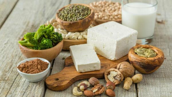 dieta per palestra vegetariana