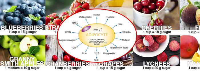 Fruttosio e frutta