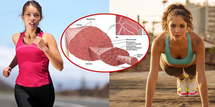 Dieta per dimagrire ed attività fisica