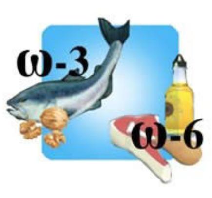 Fonti omega 3 e 6
