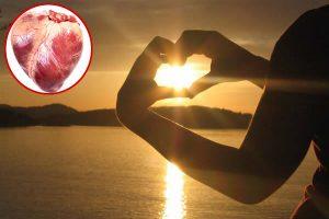 Vitamina D e salute cardiovascolare