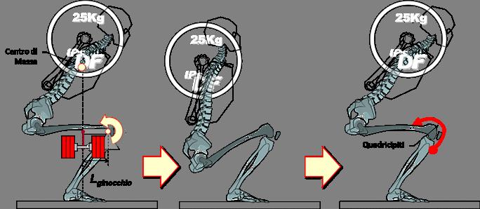 Squat e ginocchio