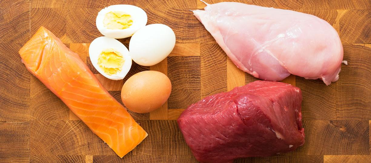 proteine e composizione corporea