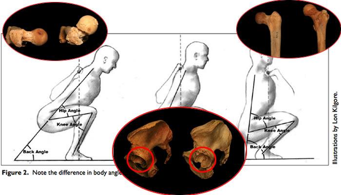Come l'anatomia influenza lo squat