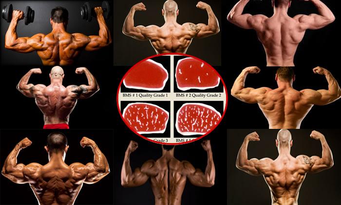 La Dieta Per La Massa Nel Bodybuilding Natural Project