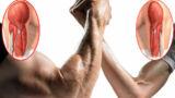 Scheda allenamento forza per il bodybuilding