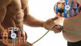 Ricomposizione corporea: la guida