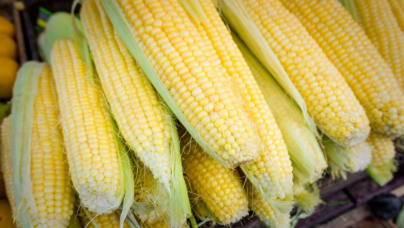 Il mais nell'alimentazione