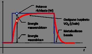 debito d'ossigeno