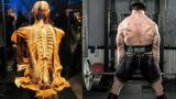 Mal di schiena ed allenamento