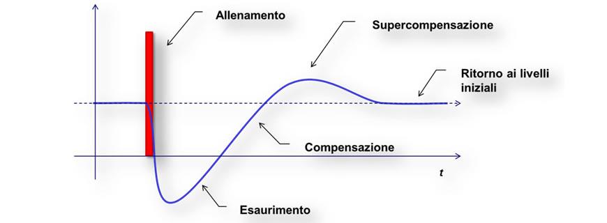 allenamento supercompensazione