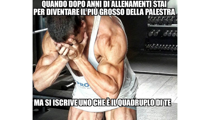davide hahn meme