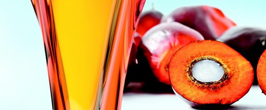 olio di palma rosso grezzo