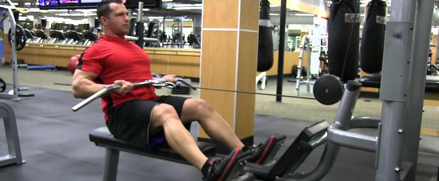 muscoli carenti schiena