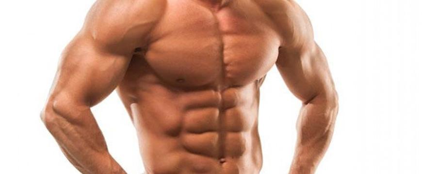muscolo