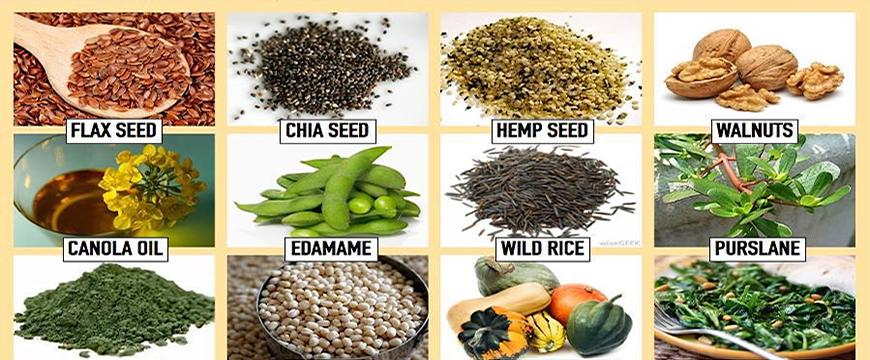 omega 3 fonti vegan