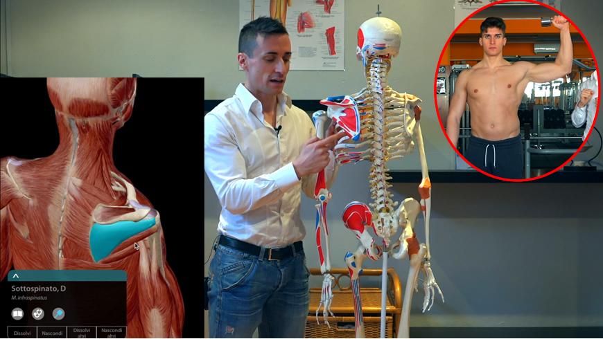 Extrarotatori: muscoli, esercizi ed altro ancora   Project