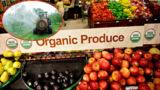 Cibo industriale: sono meglio gli alimenti naturali o processati?