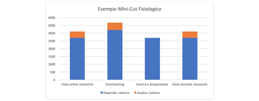 grafico fase di massa mini cut fisiologico