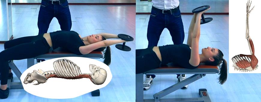 pullover muscoli ed articolazioni