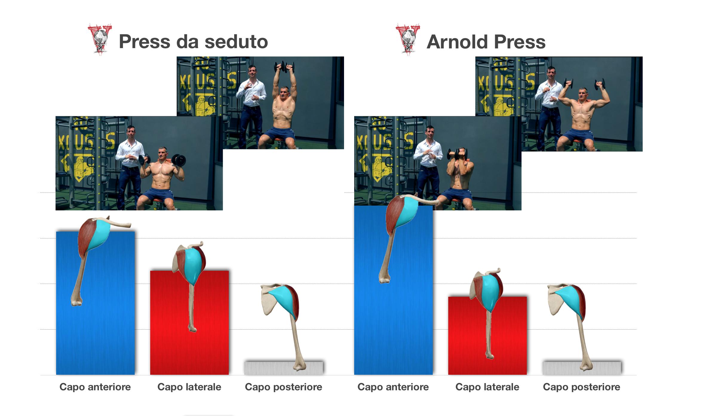 Differenze Arnold press con press