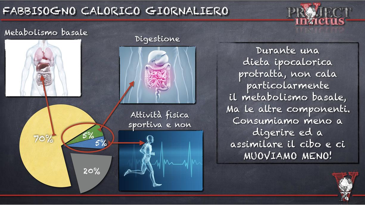 fabbisogno calorico giornaliero durante la dieta