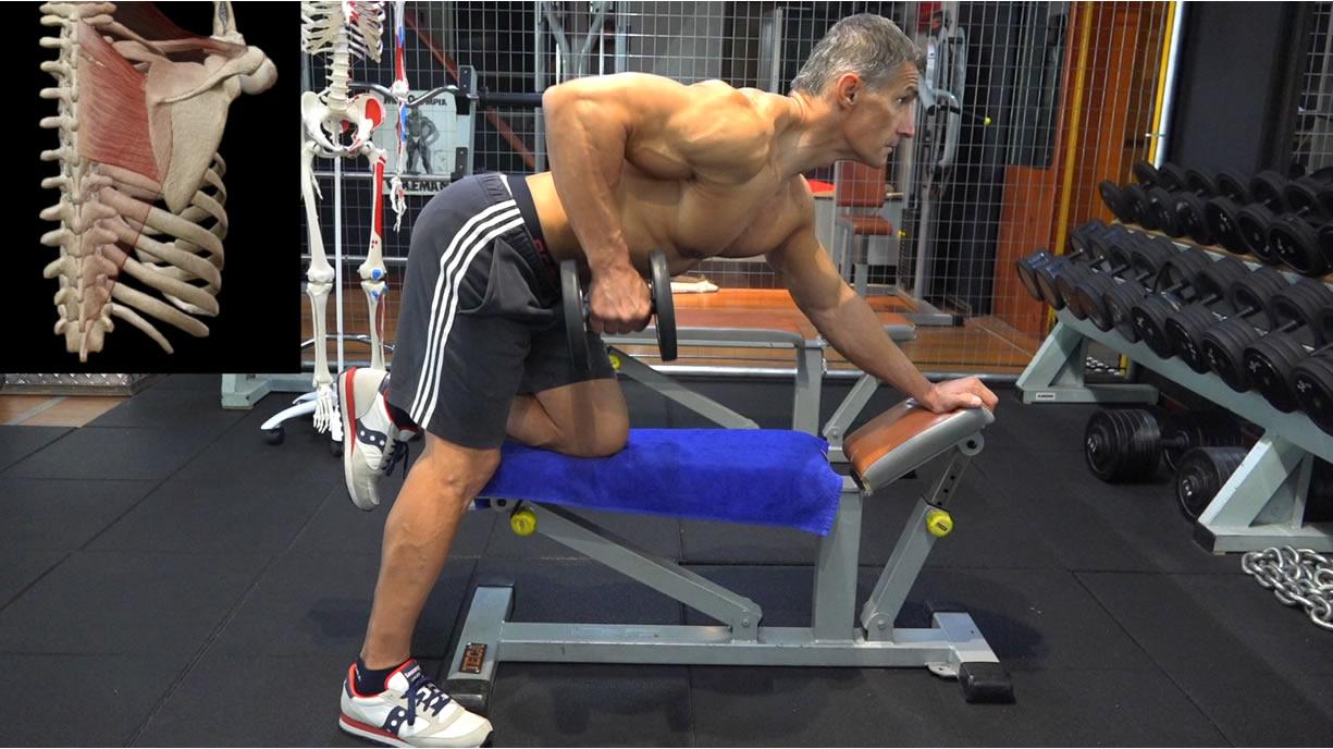 rematore con manubrio muscoli