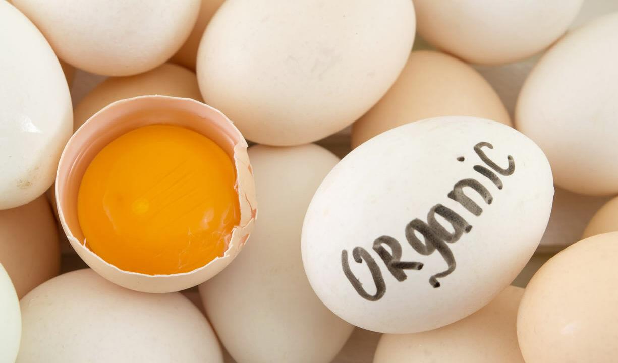 calorie uova