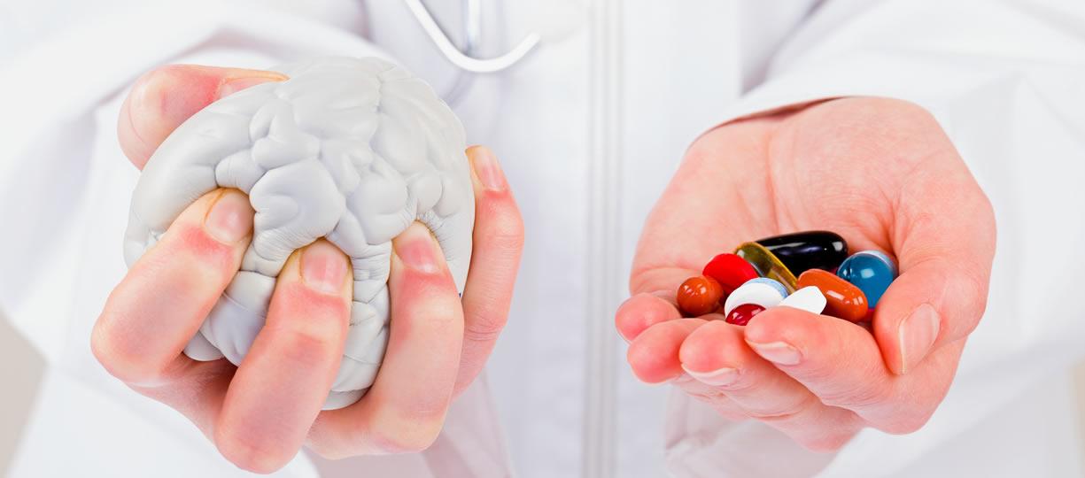 creatina e cervello