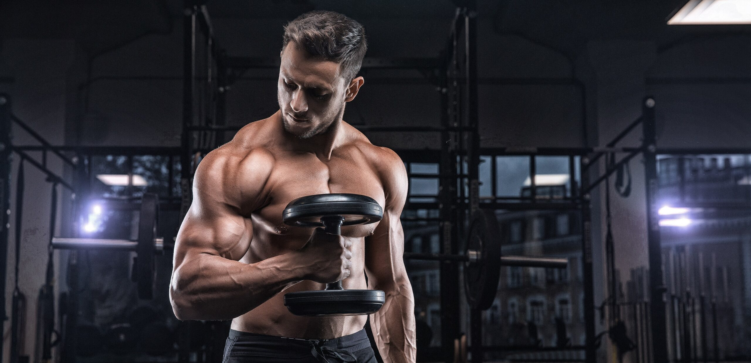 creatina e massa muscolare in palestra