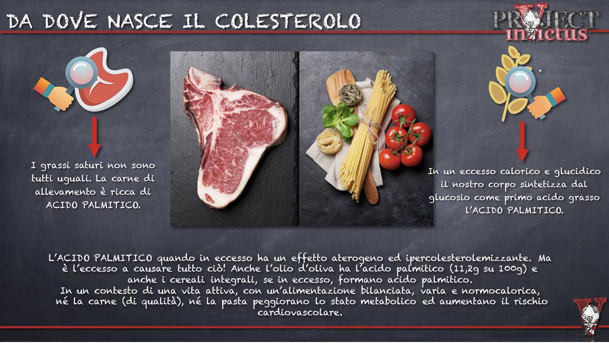 da dove nasce il colesterolo