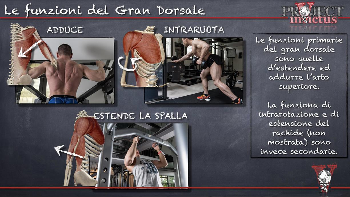 funzioni gran dorsale