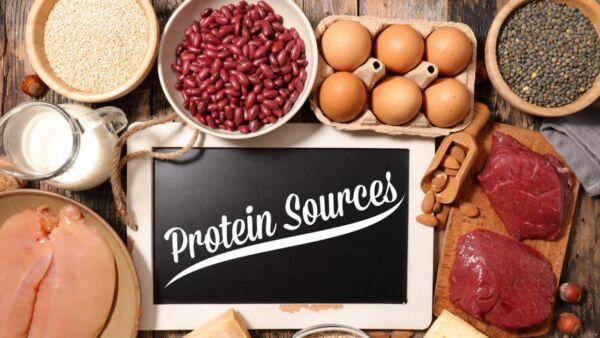 la polvere proteica ti fa bruciare i grassi
