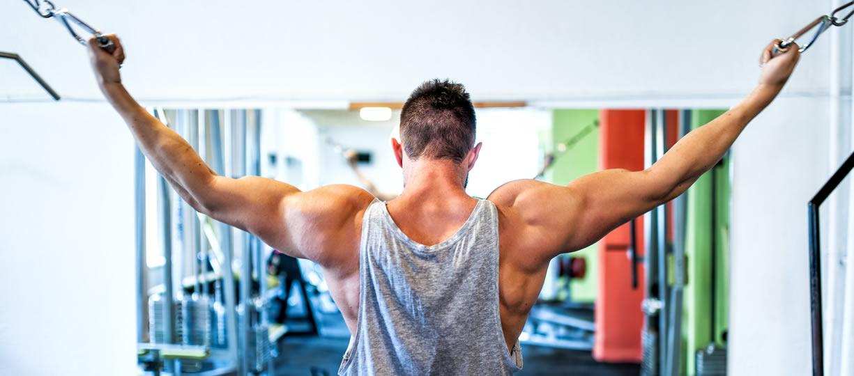 Allenamento muscoli braccia